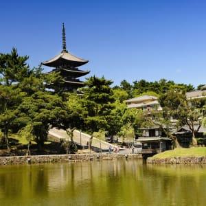 Gruppenreise «Im Reich der Sonnengöttin» ab Kyoto: Nara Kofuku-ji temple