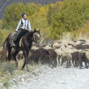 Faszination Seidenstrasse ab Bischkek: Naryn