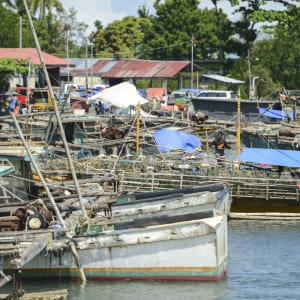Inselwelt Visayas ab Negros: Negros Bacolod