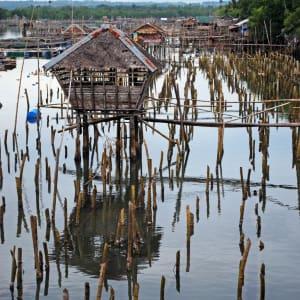 Inselwelt Visayas ab Negros: Negros: Oyster farm