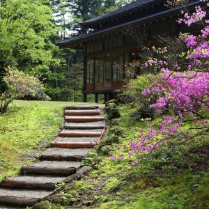 Tagesausflug nach Nikko in Tokio: Nikko Tamozawa Villa