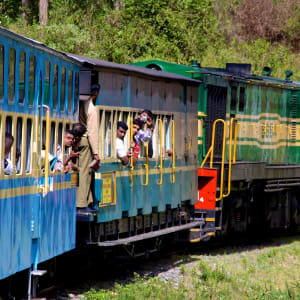 Le sud diversifié de l'Inde de Kochi: Nilgiri: Trainride