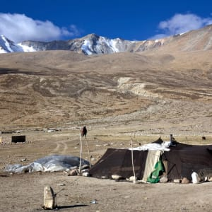 Die spektakuläre Bergwelt von Ladakh ab Leh: Nomads at Korzok Tso Moriri