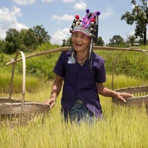 Sur les traces de l'opium de Chiang Mai: Northern Thailand: Akha Woman