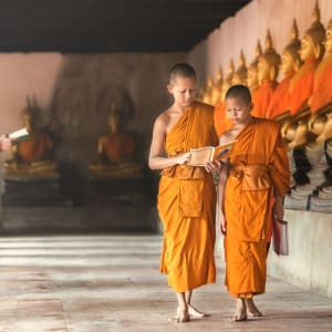 Le Siam royal de Bangkok: Novices at Ayutthaya Historical Park