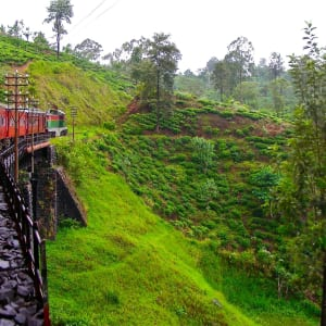 Sri Lanka für Geniesser ab Colombo: Nuwara Eliya: Train Ride