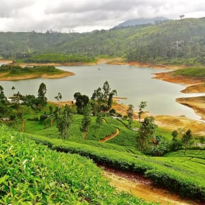 Active Discovery - Sri Lanka mit Claudia ab Colombo: Nuwara Eliya: Train ride