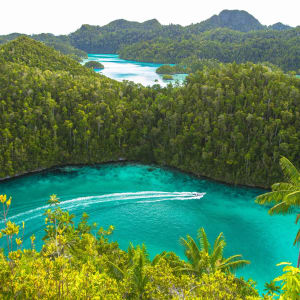Kreuzfahrt im Inselparadies Raja Ampat ab Sorong: Ombak Putih Raja Ampat