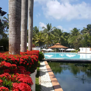Lanka Princess in Beruwela: Garden and Pool
