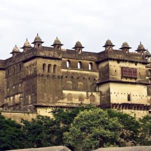 Taj Mahal & Tiger Safaris ab Delhi: Orchha: Jehangir Mahal Palace