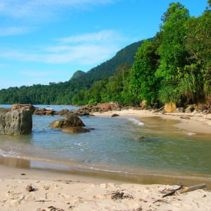 Natur pur in Sarawak ab Kuching: Permai Rainforest Resort Permai Coast
