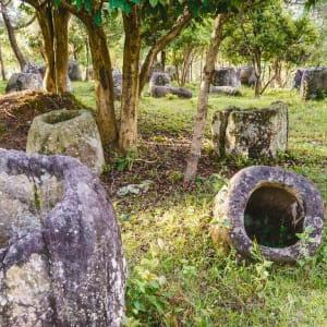 Laos Intensiv ab Vientiane: Phonesavan Plain of jars