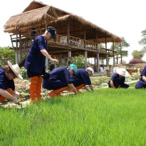 Thailand für Geniesser ab Bangkok: PICT2919