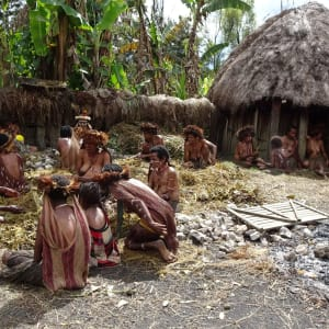 Papouasie – un voyage dans un autre temps de Jayapura: Pig Festival