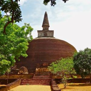 Sri Lanka Kompakt ab Colombo: Polonnaruwa: