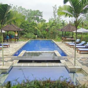 Alam Shanti à Ubud: General swimming pool