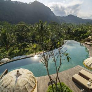 Wapa di Ume Sidemen à Ouest de Bali: Padi Swimming Pool View from restaurant
