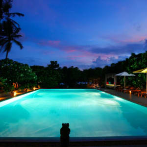 Aditya Resort in Hikkaduwa: Pool