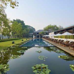 Anantara Chiang Mai Resort: Pool Lotus Pond