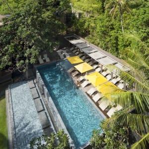 The Beach Club by Haadtien in Ko Tao: Swimming Pool (The Beach Club)