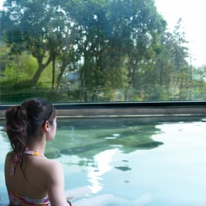 Fleur de Chine à Sun Moon Lake: Water World