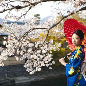Le Japon classique de Tokyo: Portrait of japanese kimono woman and cherry blossom