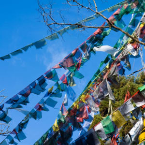Circuit Amankora de Paro: prayer flags