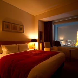 Park Hotel Tokyo: City Room w. Tokyo Tower View