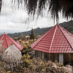 Papouasie – un voyage dans un autre temps de Jayapura: room: Deluxe Honai | Exterior