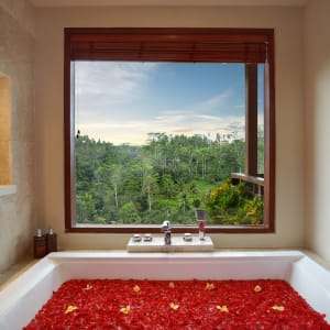 Jannata Resort & Spa in Ubud: Deluxe Suite