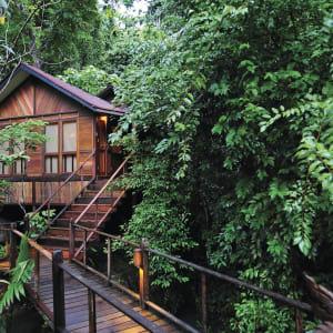 JapaMala Resort in Tioman:  Jungle Luxe Sarang