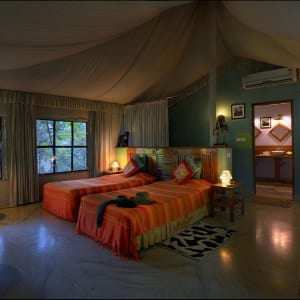 Pench Jungle Camp: Luxury Tent