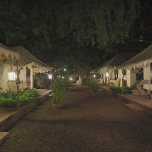 The Ajit Bhawan in Jodhpur: Luxury Tent | View
