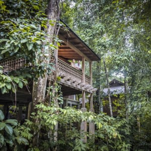 The Datai Langkawi:  Rainforest Villa