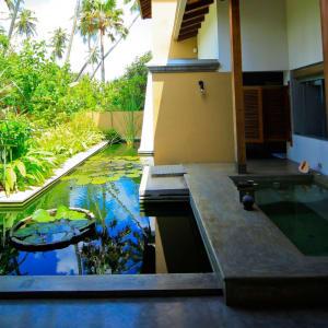 Aditya Resort in Hikkaduwa: Shanthi Suite (Courtyard View) | Pond
