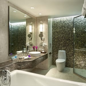 Novotel Bangkok Suvarnabhumi Airport Hotel: Superior | Bathroom