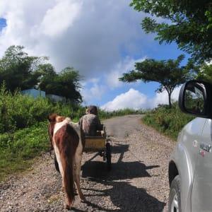 Unbekanntes Paradies Timor-Leste ab Dili: Rural road Timor-Leste