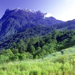 Mt. Kinabalu Park in Kota Kinabalu: Sabah: Mt. Kinabalu