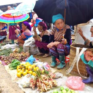 Natur & Kultur rund um Sapa ab Hanoi: Sapa