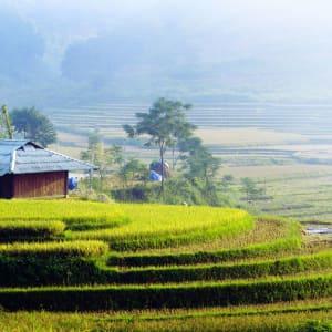 Natur & Kultur rund um Sapa ab Hanoi: Sapa: house of Red Dao on footpaths and terraced fields