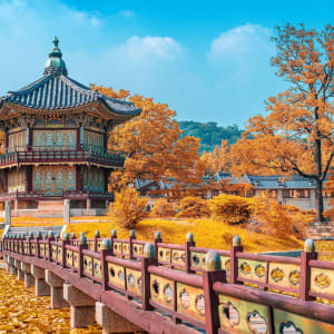 Gruppenreise «Südkorea - Land der Morgenstille» ab Seoul: Seoul Gyeongbokgung Palace