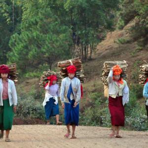 Randonnées dans le pittoresque Etat Shan (3 jours) de Lac Inle: Shan people carrying wood