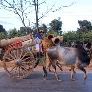 Le pays doré de Yangon: Shan State