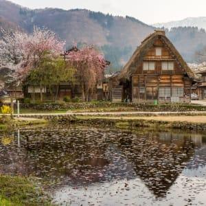 Circuit en groupe «L'éclat du Japon» de Tokyo: Shirakawago Historic Village House