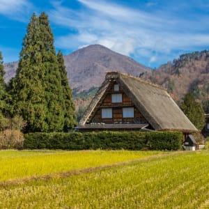 Au pays du soleil levant de Tokyo: Shirakawago: typical house