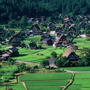 Circuit en groupe «Geisha» de Tokyo: Shirakawago: UNESCO World Heritage