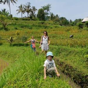 Nature et traditions à l'est de Bali de Sud de Bali: Sidemen Hiking