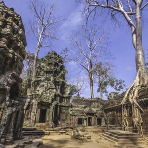 Angkor mystique de Siem Reap: Siem Reap Ta Phrom