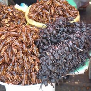 Traversée de Phnom Penh à Angkor: Skun - grilled crickets and spiders