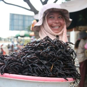 Von Angkor nach Saigon ab Siem Reap: Skun - spiders are a local delicacy
